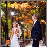 Свадебные соблазны :: Евгений Мезенцев
