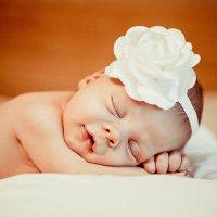 Спящая красавица :: Светлана Зырянова
