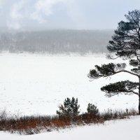 зимний берег реки Томь :: Евгений Фролов
