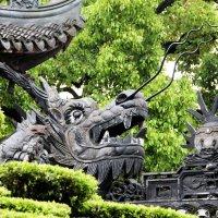 Китай. Шанхай. Сад радости. :: Виктория