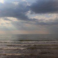 Азовское море :: Наталья Лунева