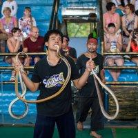 Таиланд 2013 :: Наталья Терентьева