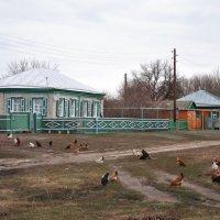 домик в деревне :: Владимир Горбунов