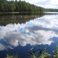 Карельские озера. Отражение :: николай -