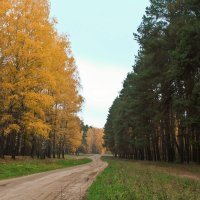 Два цвета :: Никита Филатов