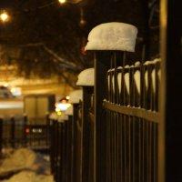 """Ограда  ворот """"Райского сада"""" :: Алексей Чирков"""
