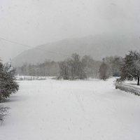 Снегопад :: Сергей Беляев