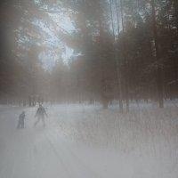туман :: Олег Берсенев
