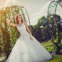Wedding :: Сергей Навроцкий