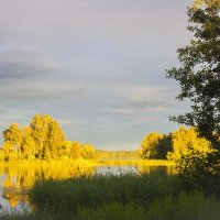 вечернее солнце :: liudmila drake