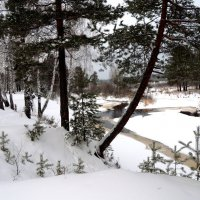 Теплая зима :: Геннадий Ячменев
