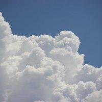 Летнее небо :: Мария Рябухина
