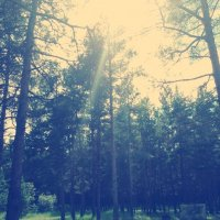 в парке :: Сардаана Гоголева