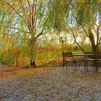 Поздняя осень :: Виктор