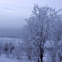 Мороз и ...полярная ночь :: Наталья Андреева