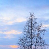Закат на Севере :: Павел Белоус