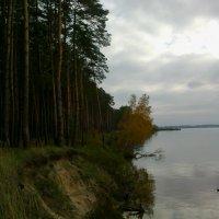 Берег Днепра :: Lerika Nikkiti Уварова
