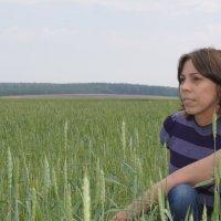 дева в поле :: Элла Илларионова