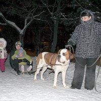 Детские радости :: Ирина Подлузская