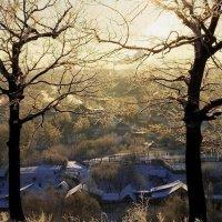 морозный денек :: Марат Валеев