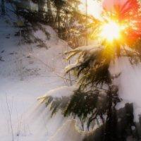 Рождение Нового Года. :: Любовь Гайшина