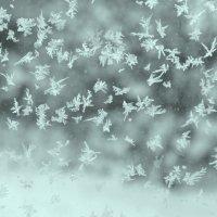 снежинки* :: Zhanna Guseva