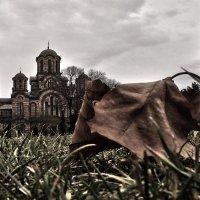 Белград. :: Алексей Пышненко