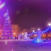 Фотограф Верхняя Пышма :: Галина Данильчева