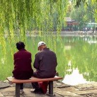 Китай. Пекин. Двое :: Лариса Фёдорова