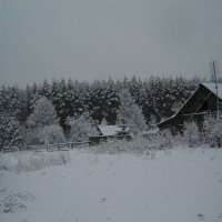 Вот она красавица зима :: ИРИШКА КАЗАКОВА