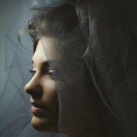 Grey :: Ann Gorelik