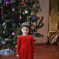 новогодняя принцесса... :: Батик Табуев