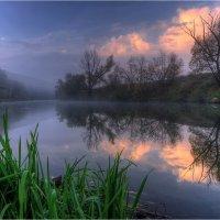 Раннее утро на реке :: Nikita Volkov