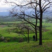 В горах Псебая.. :: Ирина Лядова
