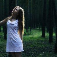 Загадки леса :: Viktoria Shpengler