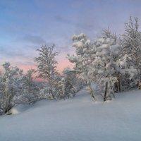 Природа Севера :: олег