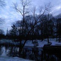 Январский снежный вечер :: Lina Liber