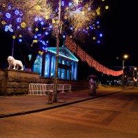 Белгород. Остатки Новогодних Праздников. :: Mitya Galiano