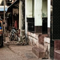 На улицах Индии :: Елена Шацкова