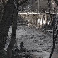 Зимняя речка :: Георгий Столяров