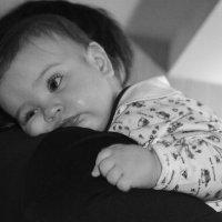 спать хочется.. :: Лариса Красноперова
