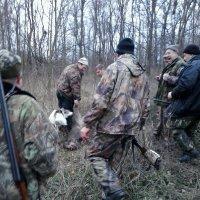 Охота :: Александр Степаненко