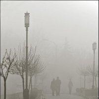 Туман :: Александр Смольников