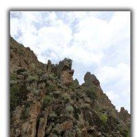 гора Шалтау, высота 3тыс. метров :: Алтынбек Картабай