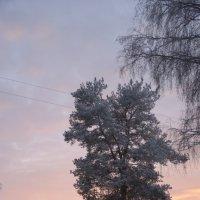 Зимний вечер :: Михаил Бреднев