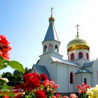 Свято-Воскресенский храм :: Владимир Гудованый