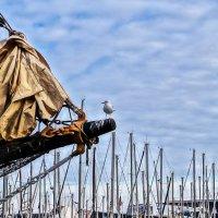 в порту Барселоны :: Alex