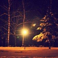 зима..улица...фонарь.. :: Алёна Горбылёва