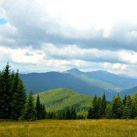 Карпатские горы :: Тамара Пейкова