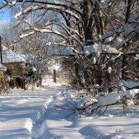 зима :: юрий иванов